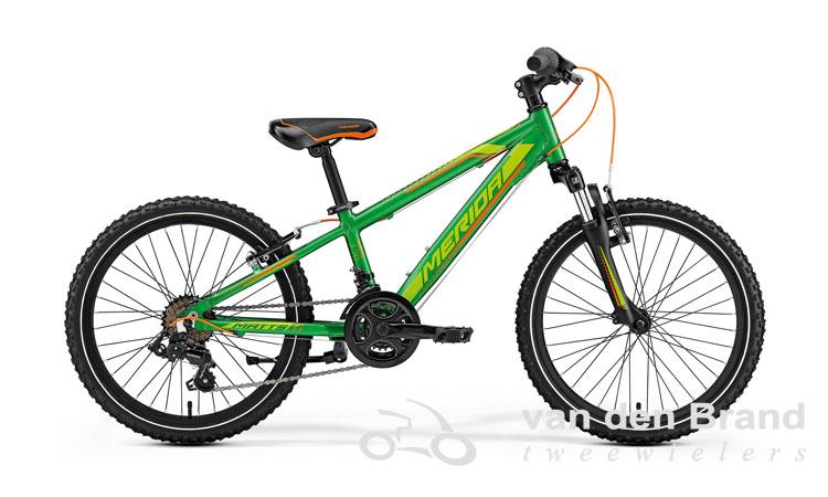Matts-20-groen