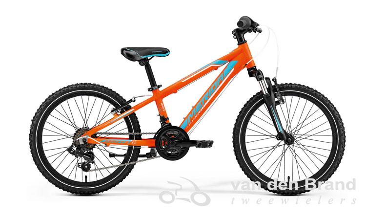 Matts-20-oranje